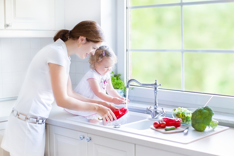 Caring For Your Garbage Disposal And Kitchen Sink Admiral Plumbing Services Llc